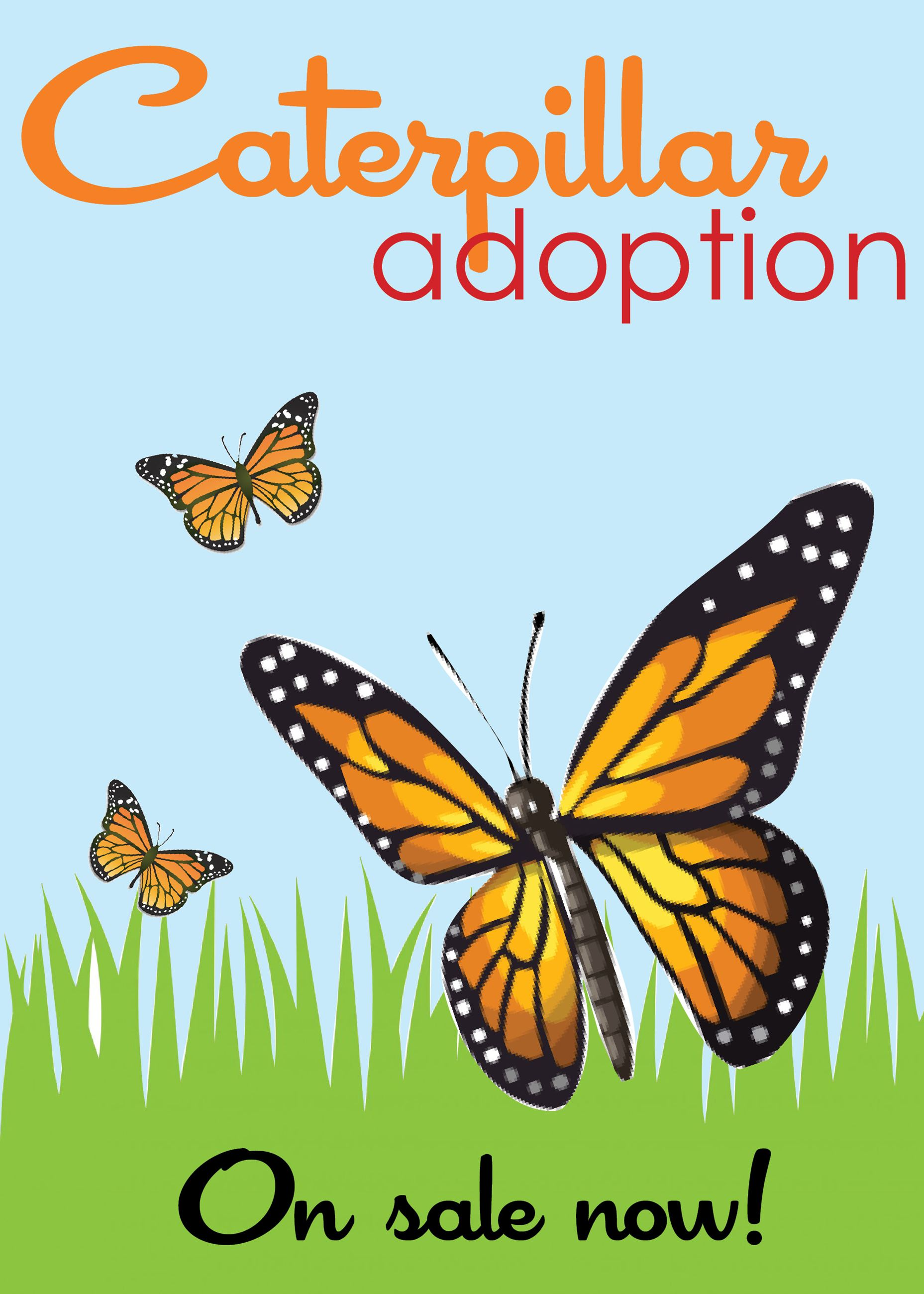 caterpillar adoptionon sale